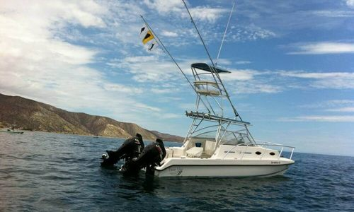 Image of Twin Vee 26 Express Catamaran for sale in United States of America for $49,950 (£37,483) Dana Point, California, United States of America