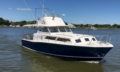 Image of Bertram 38 Flybridge Cruiser for sale in United States of America for $20,500 (£15,235) Tracys Landing, Maryland, United States of America