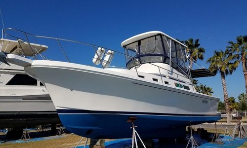 Image of Albin 32 & 2 for sale in United States of America for $94,500 (£67,379) Merritt Island, Florida, United States of America