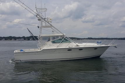 Tiara 3600 for sale in United States of America for $48,000 (£36,408)