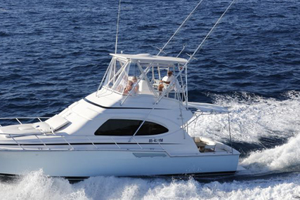 Bertram 390 for sale in Netherlands for €315,000 (£276,132)