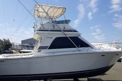 Blackfin 36 Convertible for sale in United States of America for $62,000 (£44,974)