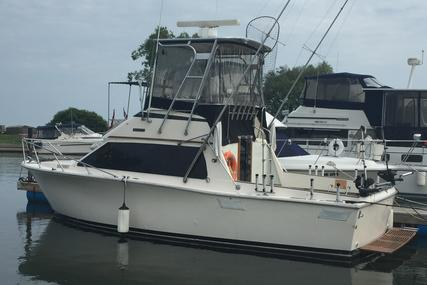 Pacemaker 30 Sportfisherman for sale in Canada for P.O.A.