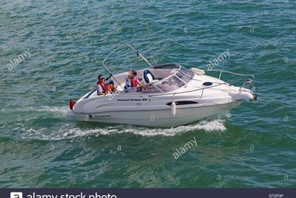 SCARANI 20 for sale in United Kingdom for £14,995