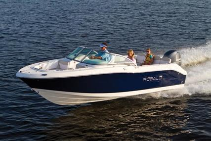 Robalo R207 for sale in United Kingdom for 50.299 £