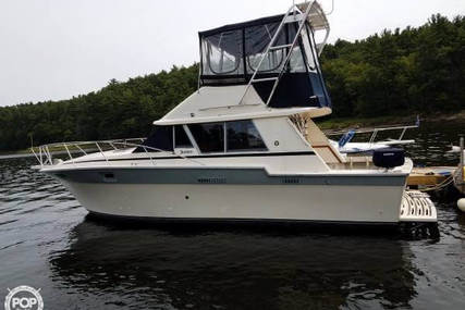 Silverton 34 Convertible for sale in United States of America for $24,500 (£17,538)