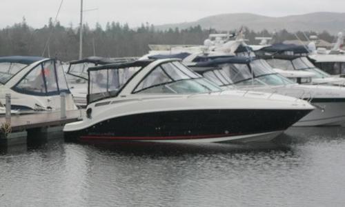 Image of Bayliner 842 Overnighter for sale in United Kingdom for £67,995 Balloch, United Kingdom