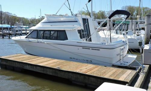 Image of Bayliner Ciera 2858 Classic for sale in United States of America for $22,500 (£16,234) Galena, Maryland, United States of America