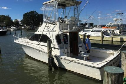 Luhrs Tournament 350 Custom for sale in United States of America for $25,000 (£18,896)
