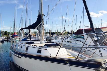 Endeavour 40 for sale in United States of America for $84,900 (£64,250)