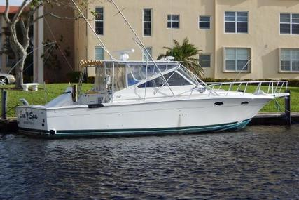 Blackfin 38 Combi for sale in United States of America for $79,000 (£59,615)