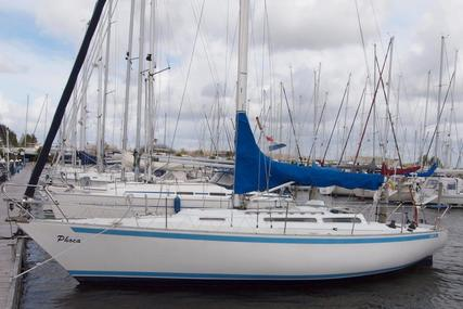 Show 34 for sale in Netherlands for €22,500 (£19,901)