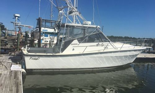 Image of Rampage 33 Sport Fish Express for sale in United States of America for $36,000 (£25,663) Sneads Ferry, North Carolina, United States of America
