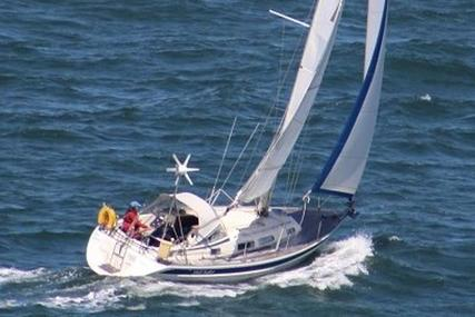 Hallberg-Rassy 31 for sale in United Kingdom for £54,950