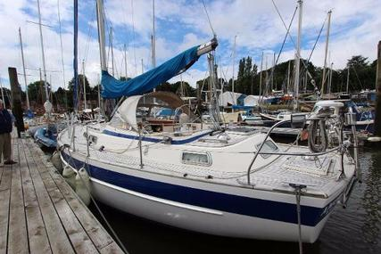 Hallberg-Rassy 36 for sale in United Kingdom for £79,950