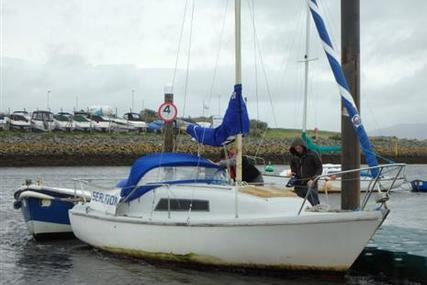 SEAL 22 for sale in United Kingdom for £1,950