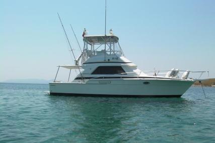 Bertram 37 Convertible for sale in Greece for €140,000 (£123,567)