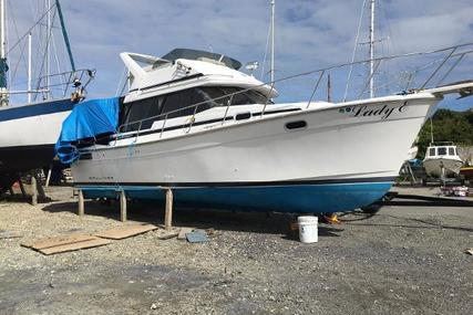 Bayliner 3288 Flybridge for sale in United Kingdom for £42,000
