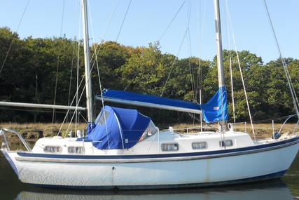 Seadog 30 for sale in United Kingdom for £9,750