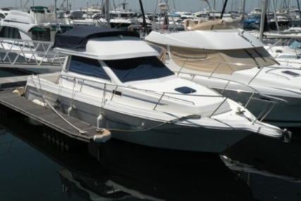 Rodman 900 FLY for sale in Portugal for €65,000 (£57,324)