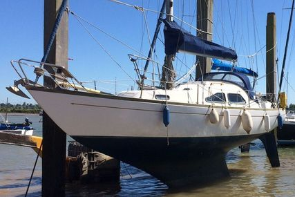 Kings Cruiser 29 for sale in United Kingdom for £4,500
