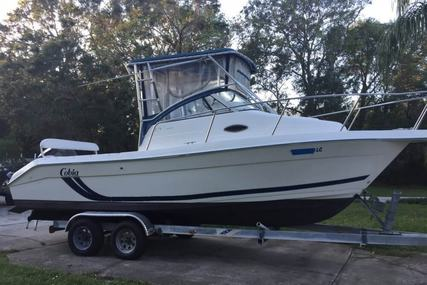 Cobia 250 WAC for sale in United States of America for $20,495 (£14,673)