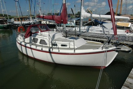 MIDGET 31 for sale in Netherlands for €44,500 ($50,928)