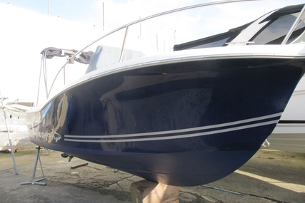 White Shark 205 Club for sale in United Kingdom for £19,950