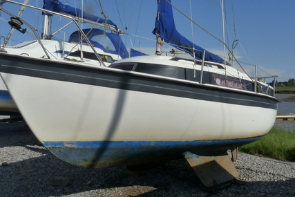 Newbridge Navigator 19 for sale in United Kingdom for £850