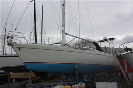 Maxi 999 for sale in United Kingdom for £28,500