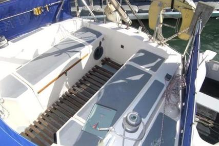 Seawolf 26 for sale in United Kingdom for £7,995