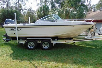 Boston Whaler Dauntless 20 for sale in United States of America for $17,500 (£13,260)