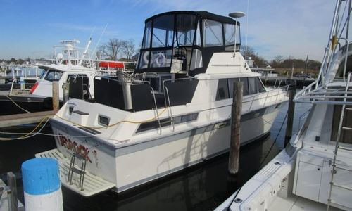 Image of Silverton 40 Aft Cabin for sale in United States of America for $19,900 (£14,288) Islip, New York, United States of America