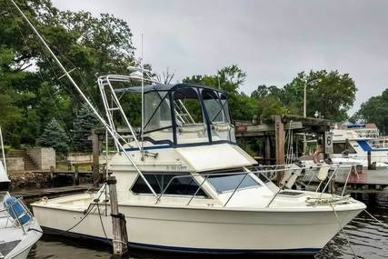 Hatteras Flybridge 32 for sale in United States of America for $19,900 (£14,340)