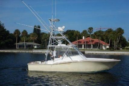 Egg Harbor Predator for sale in United States of America for $199,000 (£149,450)
