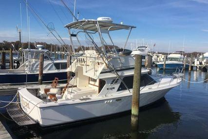 Blackfin 29 Sportfisher for sale in United States of America for $27,500 (£21,796)