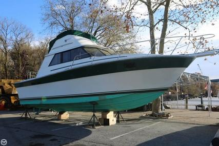 Silverton 31 Convertible for sale in United States of America for $12,500 (£8,853)