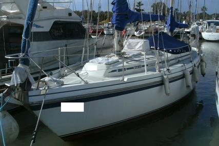 Contest 32 for sale in Spain for €29,500 (£25,942)