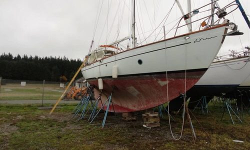 Image of Rafiki 37 Cutter for sale in United States of America for $69,500 (£52,338) Oak Harbor, Washington, United States of America