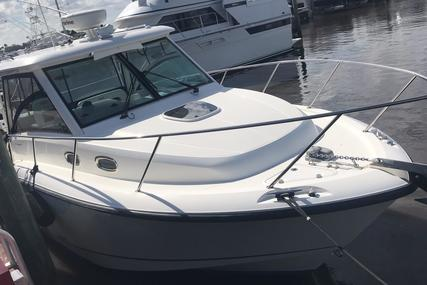 Boston Whaler 315 Conquest for sale in United States of America for $199,500 (£142,809)