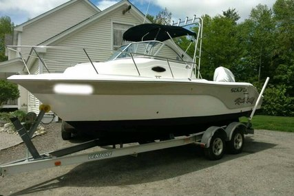 Sea Fox 216 Walkaround for sale in United States of America for $22,500 (£16,106)