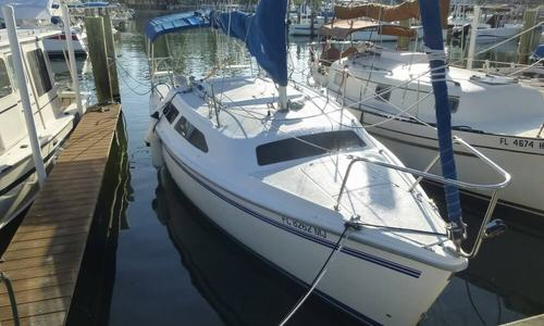 Image of Catalina 250 for sale in United States of America for $14,500 (£10,448) Dunedin, Florida, United States of America