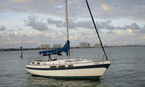 Image of Morgan Out Island 36 for sale in United States of America for $19,500 (£14,994) Miami, Florida, United States of America