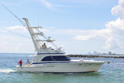 Bertram Sport Fisherman for sale in United States of America for $84,000 (£64,482)