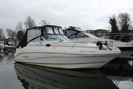 Rinker FIESTA VEE 24 for sale in United Kingdom for £13,950