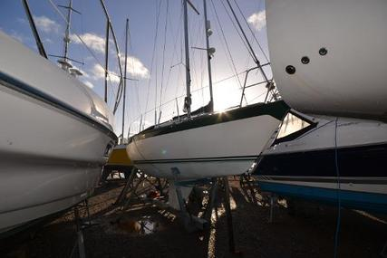 Oyster 26 for sale in United Kingdom for £15,995