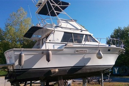 Silverton 37 Convertible for sale in Italy for €20,000 (£17,640)