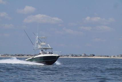 Blackfin 33 Combi for sale in United States of America for $49,995 (£37,692)