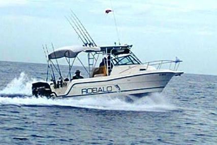 Robalo 2440 Walkaround for sale in United States of America for 28.500 $ (20.287 £)