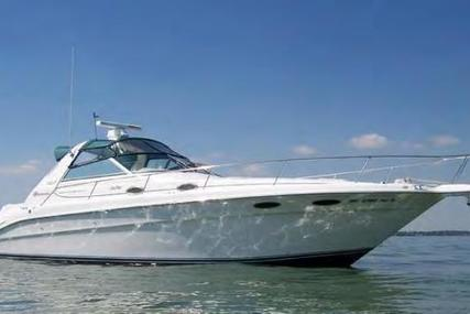 Sea Ray Sundancer for sale in United States of America for 44.900 $ (31.966 £)